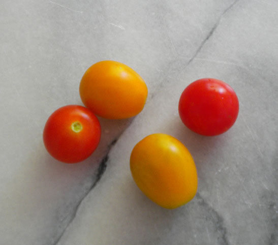 The first four little tomatoes, from mid July