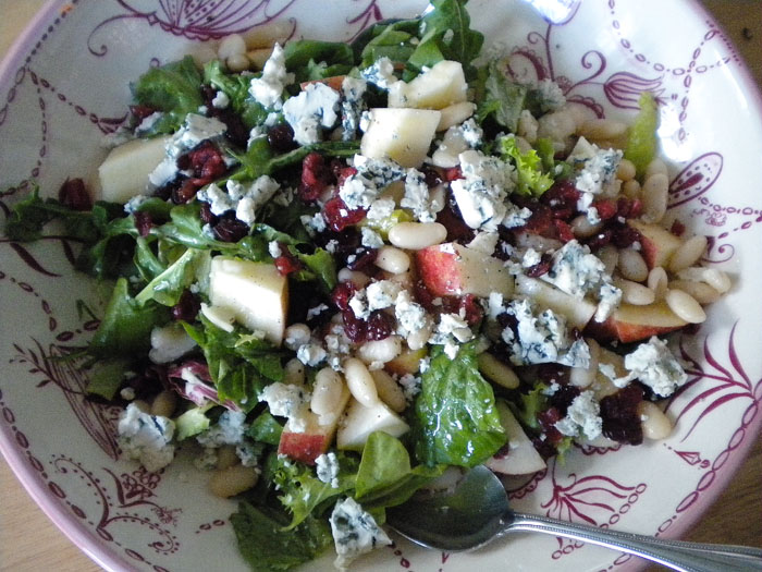Arugula and green leaf lettuce with apples, white beans, dried cranberries, blue cheese, and balsamic, olive oil dressing.