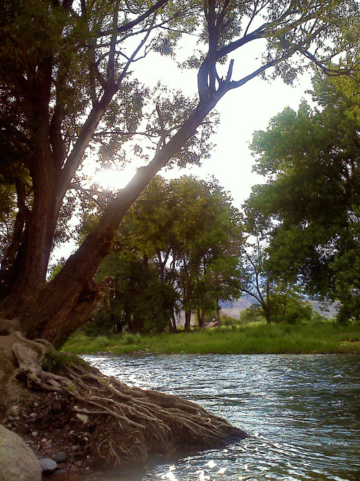 Fishing the Arkansas River, Canon City, Colorado