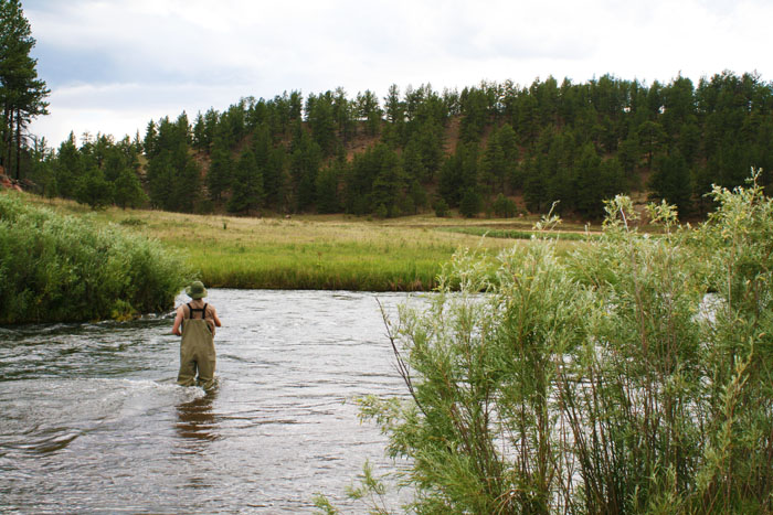 Fishing on the South Platte at Happy Meadows, CO