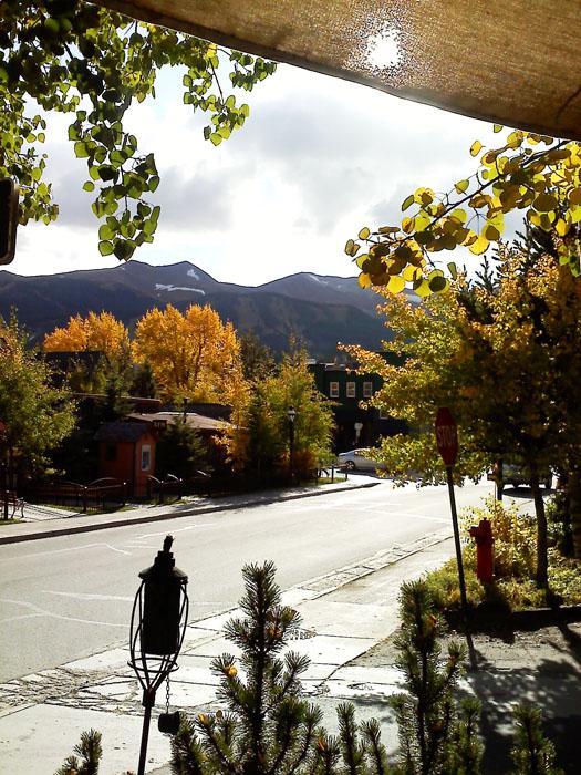 Fall leaves in Breckenridge, CO.