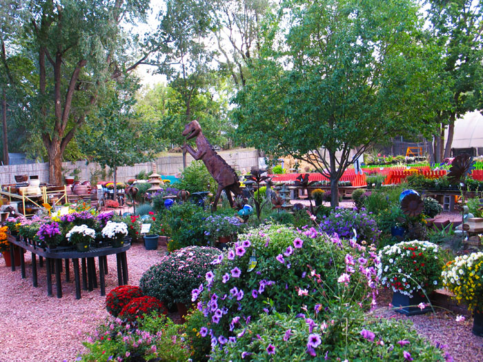 The Good Earth Garden Center is a nice place to walk around or pick something out from their vast selection of plants and garden art.