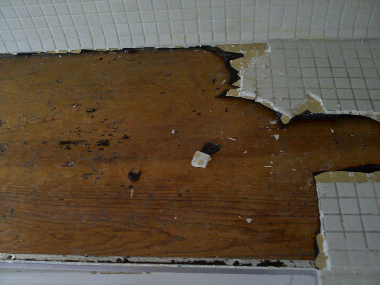 Chipping off the mosaic tile revealed the original wood countertop beneath! Glorious!