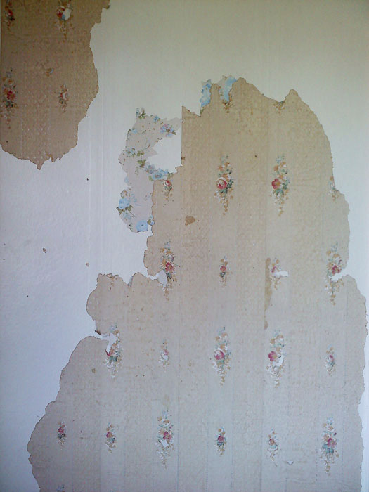 One day I started picking at a spot on the wall and uncovered this cool old wallpaper.