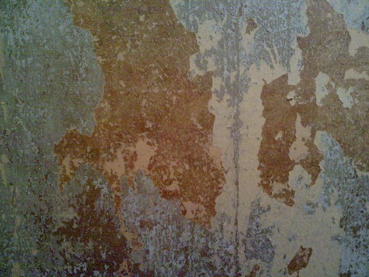 An artistic shot of the original horsehair plaster wall.