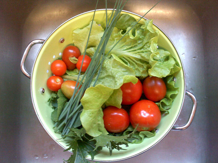Salad with various home grown lettuces, tomatoes, and chives.