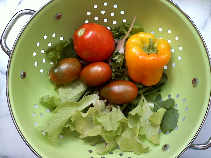 Home grown salad fixins.