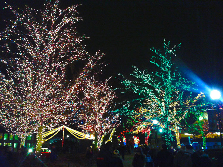 Lincoln Park Zoo Holiday Lights