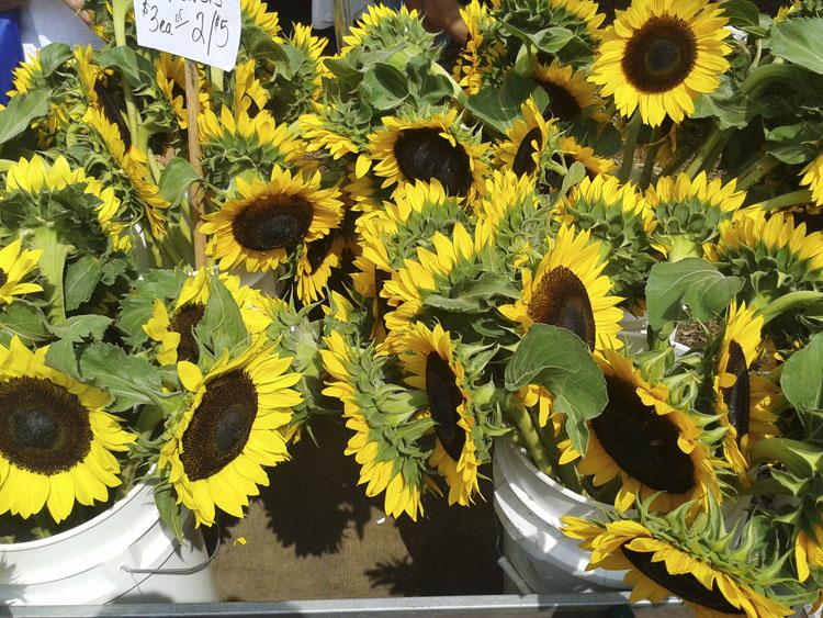 farmers market sun flowers