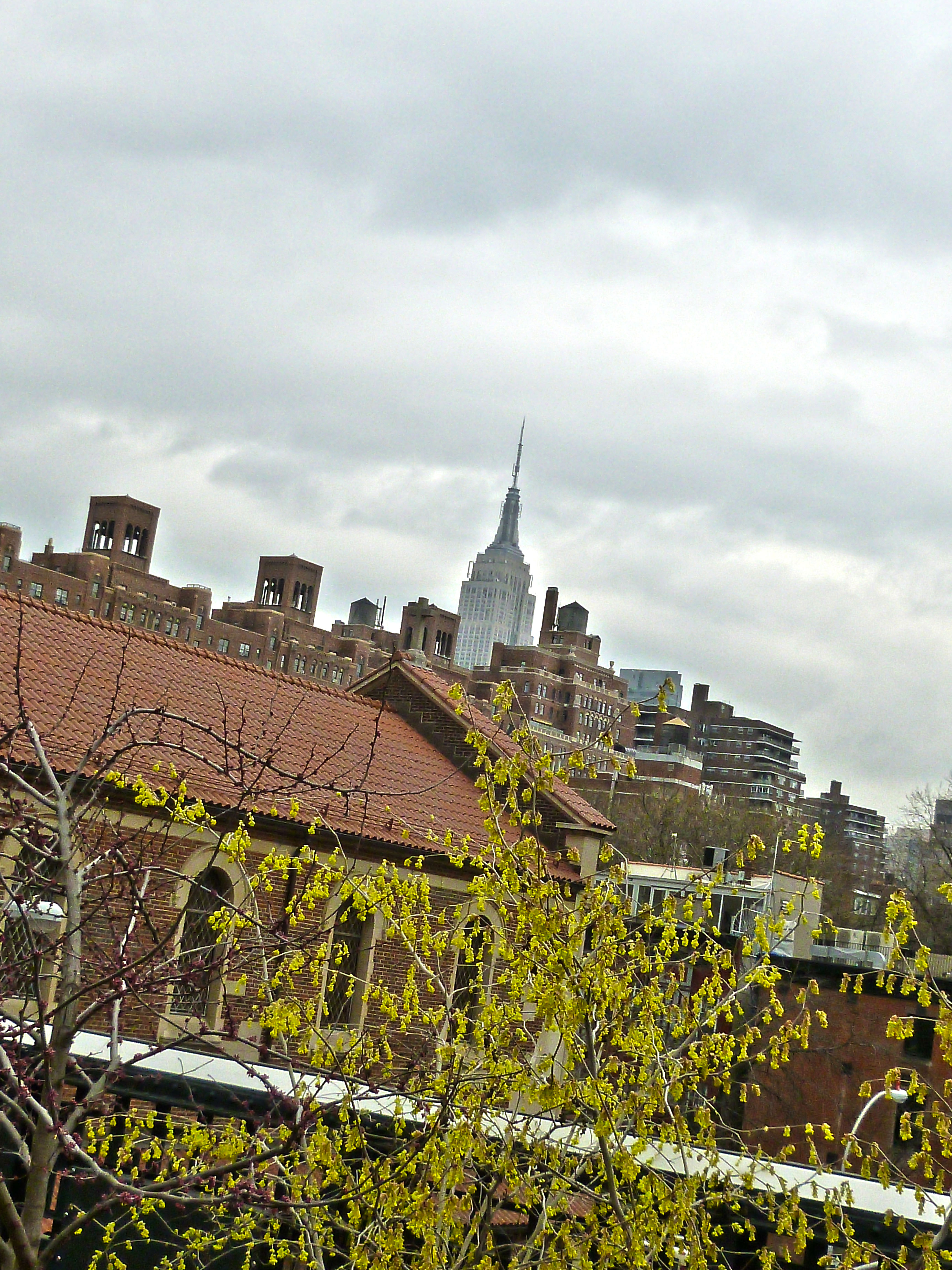 the view from the High Line, new york city