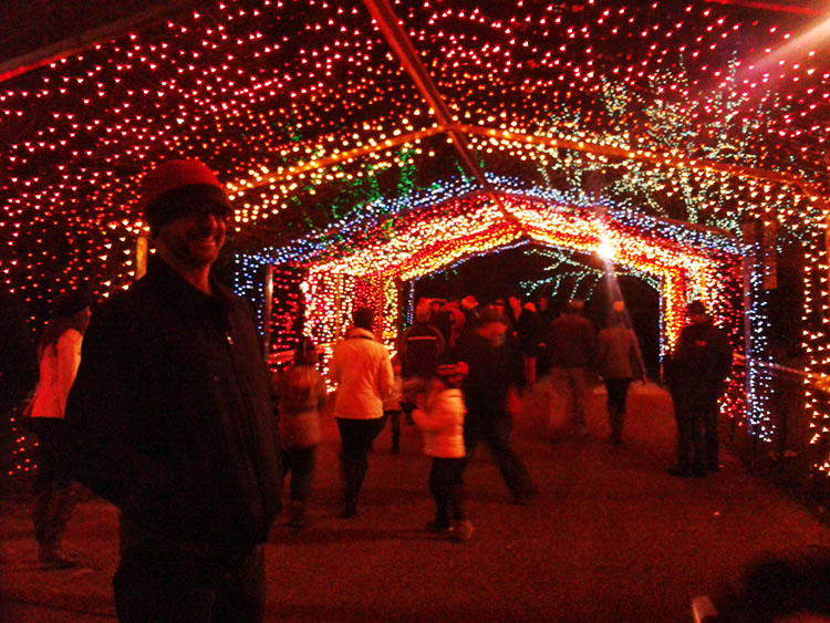 lincoln park zoo christmas lights