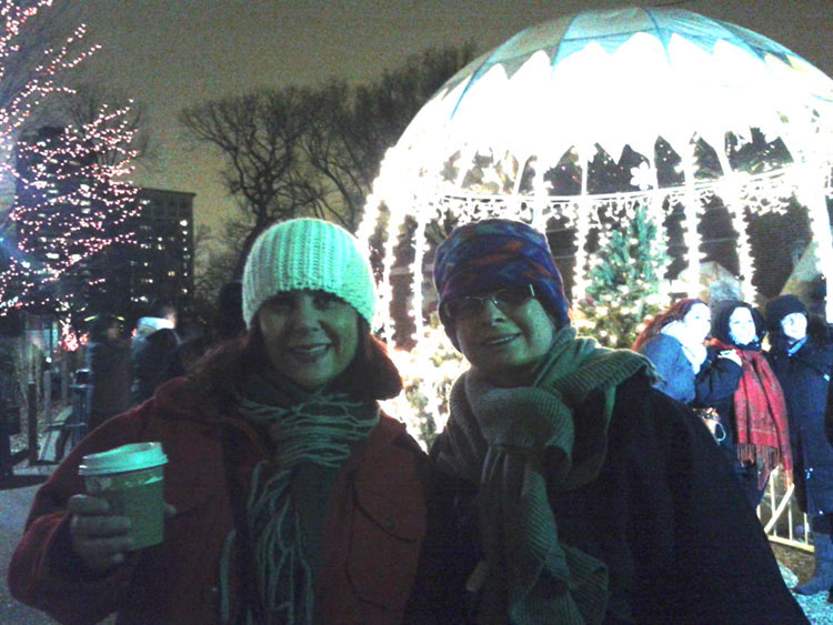 mulled wine at lincoln park zoo holiday lights